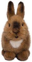 Kösener Kleines Kaninchen Purzel