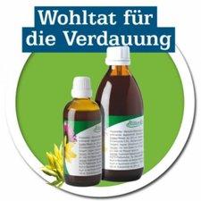 Natursprung Magenbitter Bitterkraft n.Hildegard v.Bingen (100 ml)