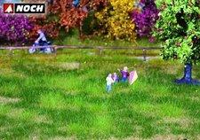 Noch Natur + Wiese Herbst (07404)