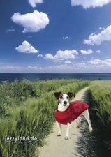 Karlie Hundepullover mit Regencape (26 cm)