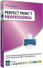 dtp Perfect Print 7 Professional (Win)