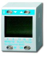Busch-Jaeger Busch-Timer Bedienelement (6543/12)