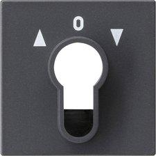 Gira Abdeckung für Schlüsselschalter (066428)