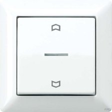 Jung Abdeckung mit Lichtleiter und Symbolen (AS 590 KO5P WW)
