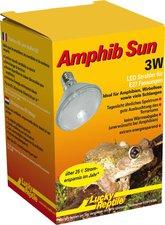 Lucky Reptile Amphib Sun groß 50 LED