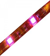 ChiliTec LED-Stripe RGB 5m 150er 12V 33W IP44