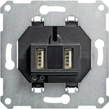 Gira USB-Steckdoseneinsatz 2-fach (235900)