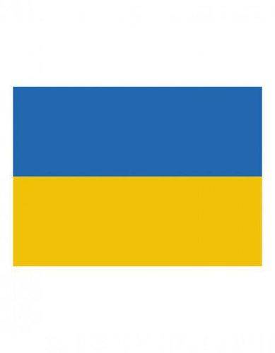 Ukraine Fanfahne EM 2016