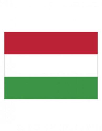 Ungarn Fahne EM 2016