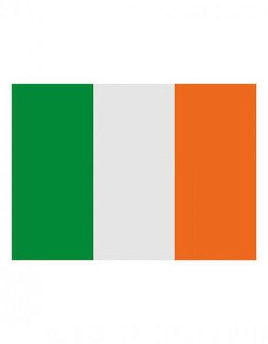 Irland Fahne EM 2016