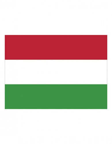 Ungarn Flagge EM 2016