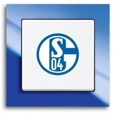 Schalke 04 Schal