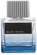 Custo Barcelona Blue Wind for Man Eau de Toilette