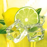 Eurographics DGDT1048 Glasbild Deco Glass Fresh Lemon Lime (50 x 50 cm)