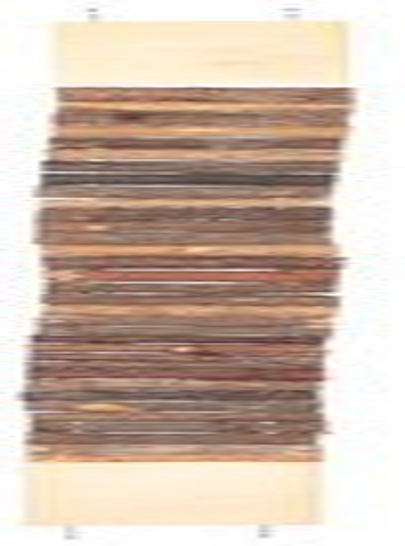 Kleintier Treppen und Leitern