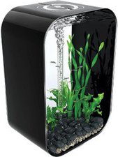 Reef One biOrb Life Portrait 60 - schwarz