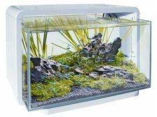 Superfish Home 25 - schwarz