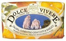 Village Nesti Dante Dolce Vivere Capri Stückseife (250 G)