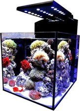Aqua Medic Blenny advanced (80 L) Meerwasseraquarium