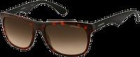 Carrera 6003 4NC CC (havana black/brown gradient)