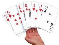 Traditional Garden Games - Extra großes Kartenspiel