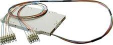 Quante Netzwerke Pigtail-Modul FMP-12C5OM3