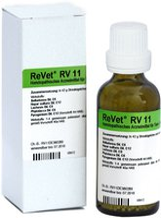 Dr. Reckeweg Revet Rv 11 Globuli ad us. vet. (42 g)