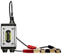 Goal Zero Batteriewächter Guardian 14002