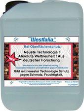 Westfalia Oberflächenschutz (2 L)