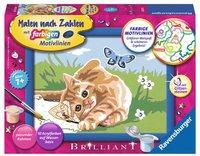 Ravensburger Malen nach Zahlen Kätzchen mit Schmetterling