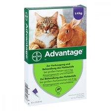 Bayer Advantage 80 mg f. gr. Katzen u. Zierkaninchen (4 x 0,8 ml)
