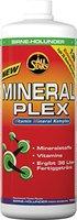All Stars Mineral Plex 1000ml Birne-Holunder