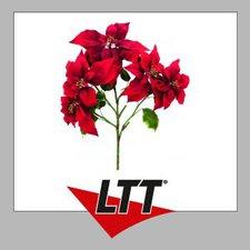 Europalms Weihnachtsstern-Busch rot 60 cm