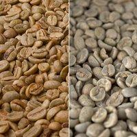 KaffeeShop 24 Rohkaffee Brasil Santos (1 kg)