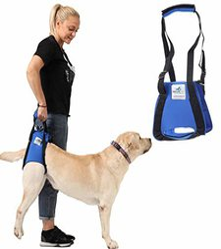 Pfaff Premium Hunde-Tragehilfe hinten (Gr. L)
