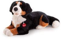 Trudi Berner Sennenhund Bruce