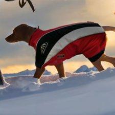 Wolters Skianzug Dogzwear (28 cm)