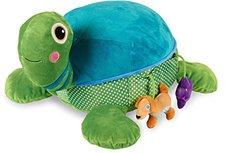 Oops Schildkröte