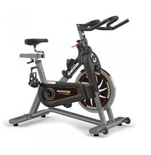 Horizon Indoor Cycle Elite IC4000