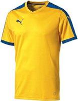 Puma Pitch Trikot team yellow/puma royal