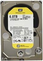 Western Digital RE SATA III 6TB (WD6001FSYZ)