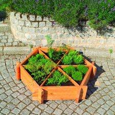 Promex Gartenideen Kräuterrad groß (380/44)