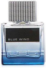 Custo Barcelona Blue Wind for Man Eau de Toilette (50 ml)