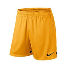 Nike Dri-Fit Knit II Shorts