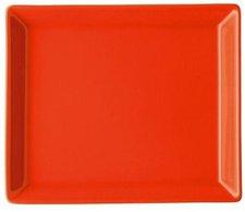 Arzberg Tric hot Platte 12x15 cm