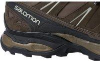 Salomon X Ultra LTR burro/absolute brown x/beach