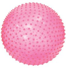 Ludi Exercise Ball (Pink)
