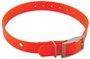 Garmin Hundehalsband (2,5 cm) orange