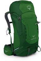 Osprey Kestrel 38 S/M jungle green