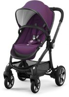 Kiddy Evostar 1 Royal Purple (2017)